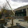 Scenes from the Commons Rebuild Project