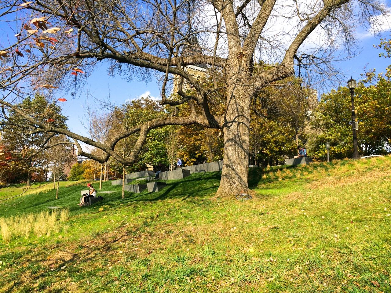 Sesquicentennial-Grove-Cornell-10-17-1411