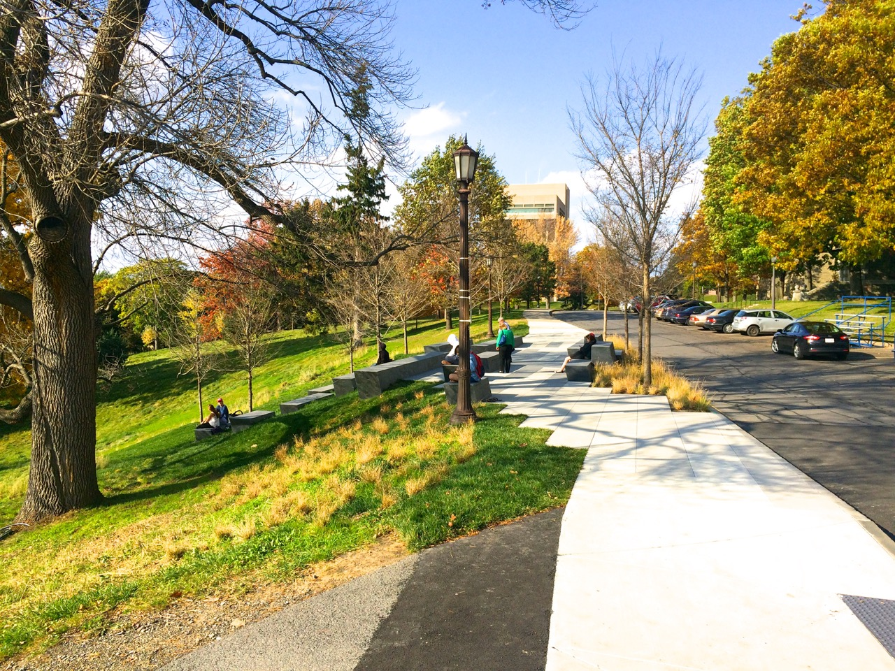 Sesquicentennial-Grove-Cornell-10-17-1412